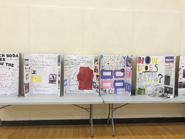 Examples of Elementary Science Fair
