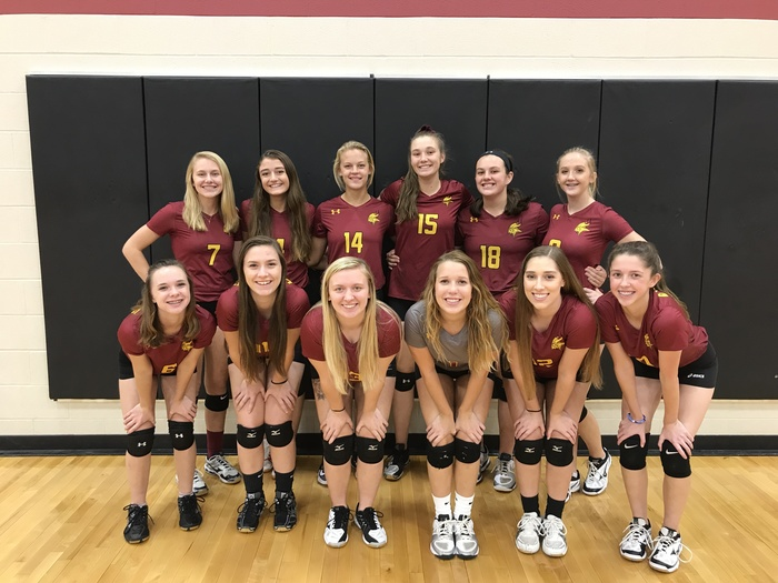 Picture of the 2017 Mission Valley High School Girls Volleyball Team