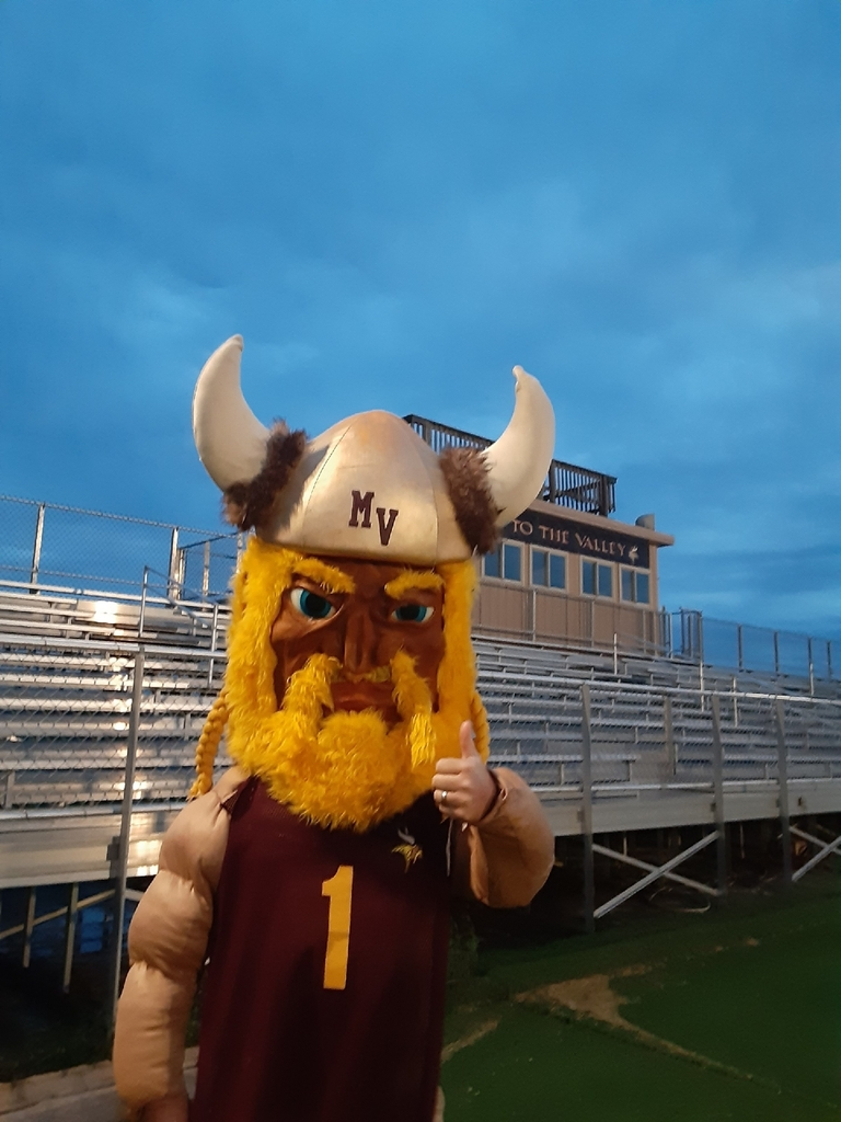 Thumbs up for Vikings